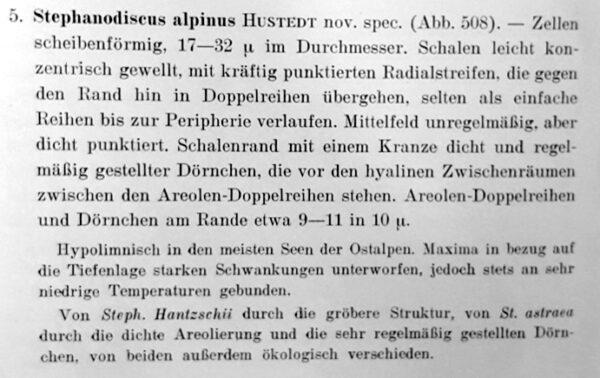 Steph Alpinus Orig Desc Text
