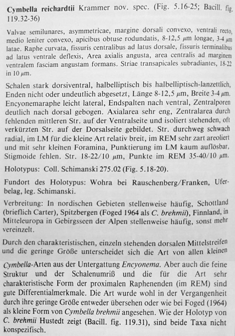 E Reichardtii Orig Desc Text
