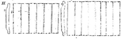 Eunotia pectinalis orig illus